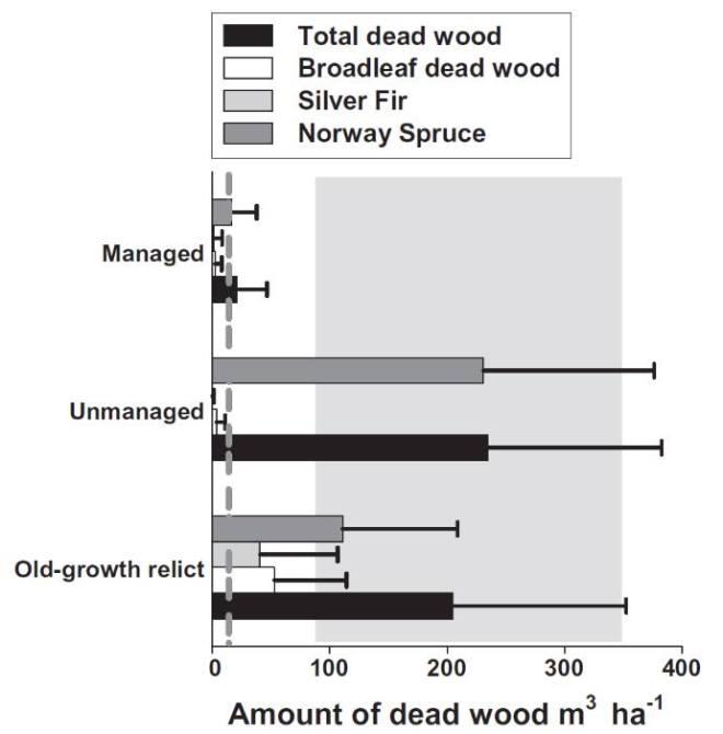 dwoodaccforest