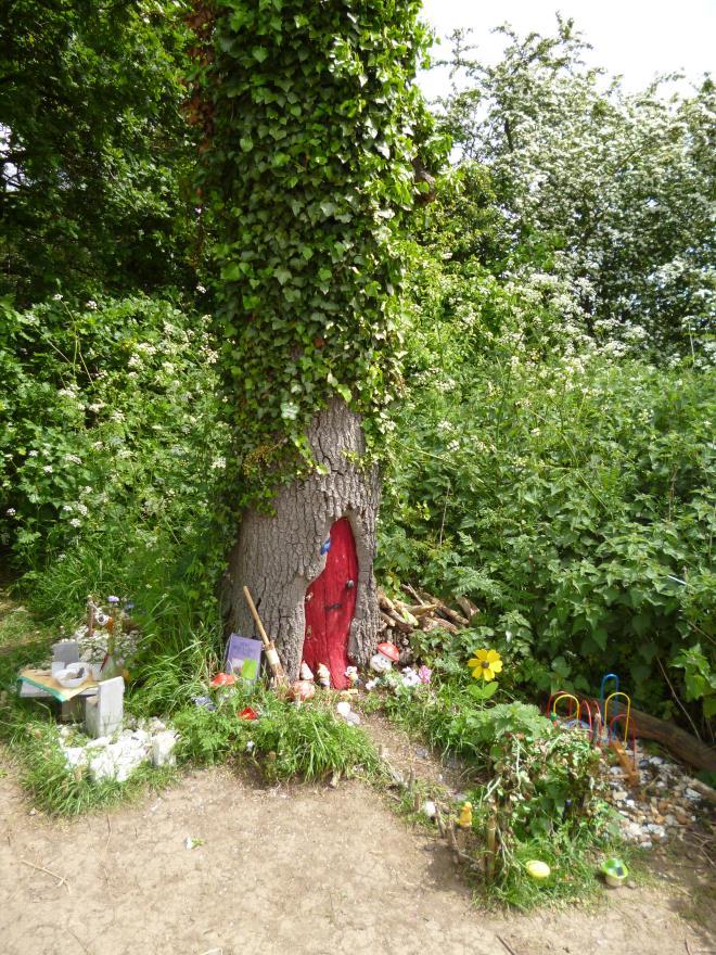 fairy house tree oak 7
